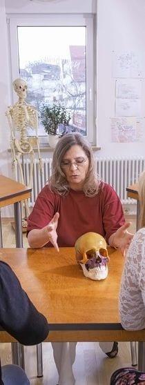 Cranio sacrale Osteopathie lernen - Ausbildung & Kurse Nähe München
